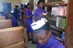 Students in the School Library